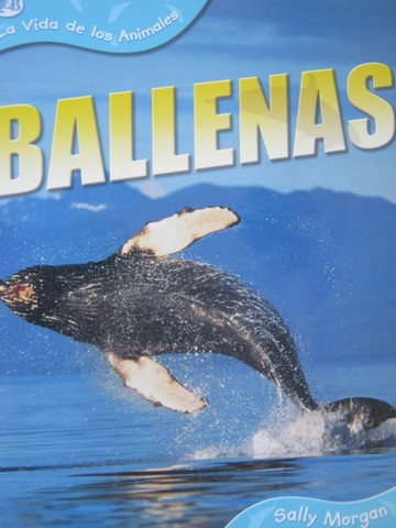 La Vida de los Animales Ballenas (P) by Sally Morgan
