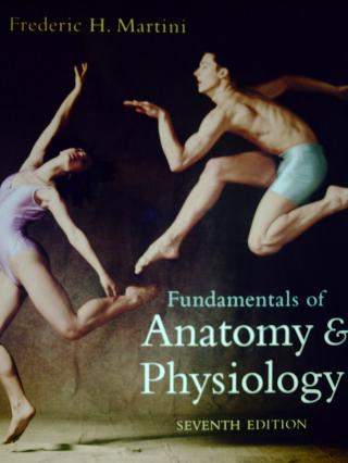 Fundamentals of Anatomy & Physiology 7th Edition (H) by Martini ...