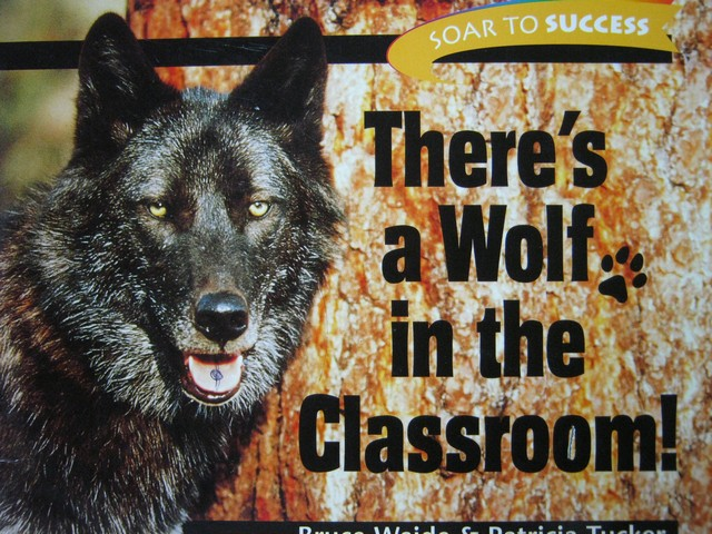 Soar to Success 6 There's a Wolf in the Classroom! (P) by Weide