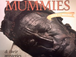 Soar to Success 6 Mummies & Their Mysteries (P) by Wilcox