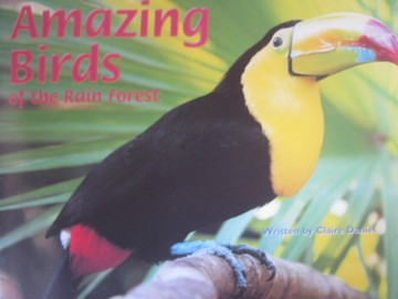 Pair-It Books Amazing Birds of the Rain Forest (P) by Daniel - Click Image to Close