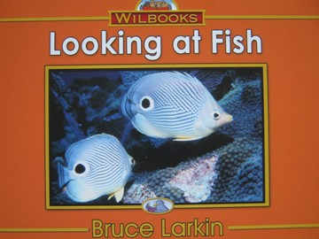 Wilbooks Looking at Fish (P) by Bruce Larkin