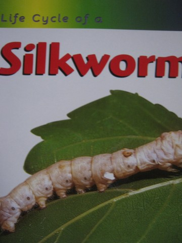 Life Cycle of a Silkworm (P) by Ron Fridell & Patricia Walsh