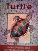 Foundations D The Turtle (P) by Lesley Jane